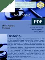 Presentacion necropsia.pptx