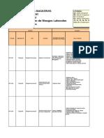 Formato Registro de Riesgos 2016