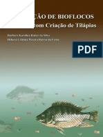 Protótipo - Tilapia Em Bioflocos