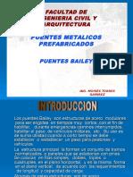 Exposicion de Puentes Bailey