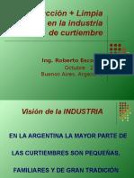 plaplicableenlaindustriadecurtiembre-091005143227-phpapp02