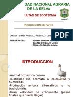Producción de Patos