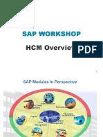 Sap Human Capital Management Workshop Presentation