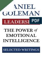 Leadership the Power of Emotional Intellegence