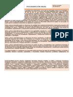 Modelo de Programacion Anual-Matemática
