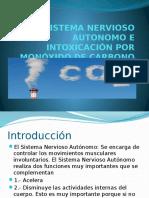 Sistema Nervioso Autonomo e Intoxicación Por Monóxido De
