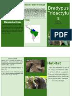 bradypustridactylus