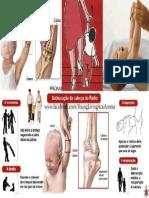 Cotovelo de Babá PDF