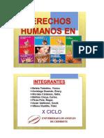 Derechos Humanos en America Mario Polo 2015