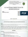neurociencias 2