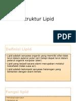 Struktur Lipid