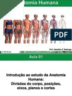 Aula01 Introduoaanatomia Posioplanoscortesedivisesdocorpohumano 150330091231 Conversion Gate01