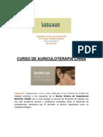 Auriculoterapia Programa Curso