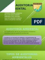 Guía de Auditoria Ambiental