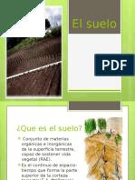 Clase de Fisiologia Vegetal.