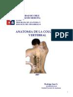 Osteo y Artro de Columna