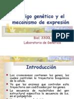 4_codigo_genetico_y_su_mecanismo_de_expresion (1).ppt