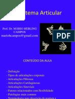 Sistema Articular 2014