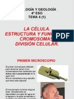 Estructuraydivisioncelular 150928091132 Lva1 App6891