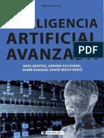 Inteligencia Artificial Avanzada - Raul Benítez, Gerard Escudero