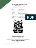 Laporan Praktikum Kimia Fisik E-2 Kelarutan Timbal Balik
