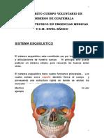 Sistema Esqueletic1