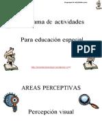 Programa de Actividades Para Educacion Especial Orientacion Andujar(1)