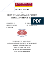 Study on Loan Apprasa Processl Pnb