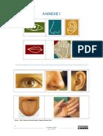 Annexe-I.pdf