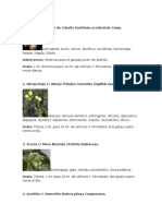 DOSIS DE TINTURAS PARA MICRODOSIS.docx