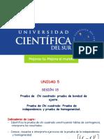 Chi Cuadrado (15)