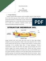 SISTEM TRANSPORT MEMBRANE.docx