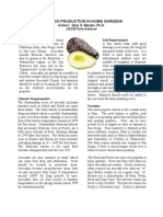 Avocado - Growing Guides
