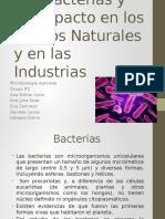 Las Bacterias y El Medio Ambiente