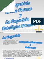 la experticia clinico forense y la experticia patologica forense.ppt