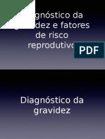 Diagnóstico Da Gravidez e Fatores de Risco Reprodutivo
