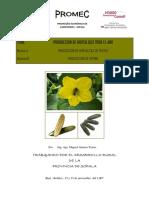 5 Manual Für Gemuesebau