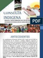 consulta y participacion para Proyectos hidrocarburiferos en Bolivia