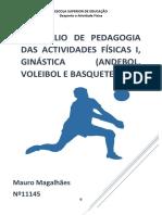 Portefolio Voley MAURO
