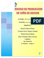 Proceso de Produccion de Caña de Azucar