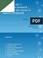 Proiect-Diveritate-tematica