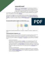 Proteína transmembranal
