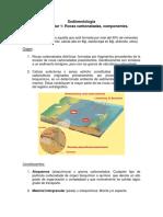 Guia_Aux_1_Componentes_Rxs_Carbonatadas+ANEXO
