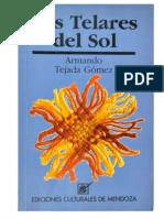 16-Los telares del sol - Armando Tejada Gómez