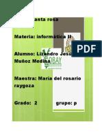 Ambiente Excel Lizandro Muñoz.