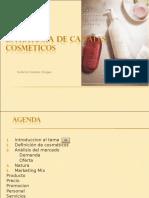 Estrategia de canales-exposición 09.11.ppt