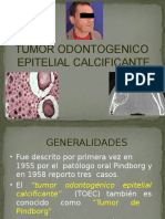 TOEC - Tumor Odontogenico Epitelial Calcificante
