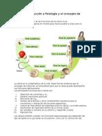 Guía Fisio Pau.docx
