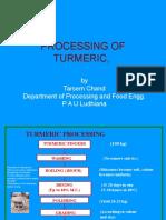 Presentation Processing of Turmeric