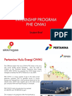 PHE ONWJ Internship Program